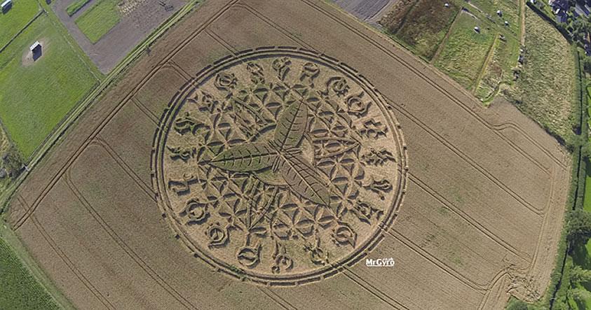 Reportan impresionante crop circle en Salisbury, Wiltshire, Reino Unido