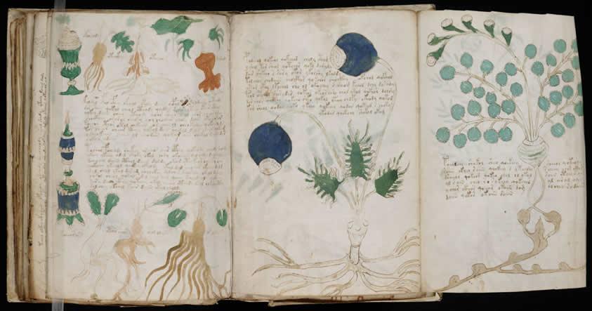 El enigmático Manuscrito Voynich será publicado por una editorial española