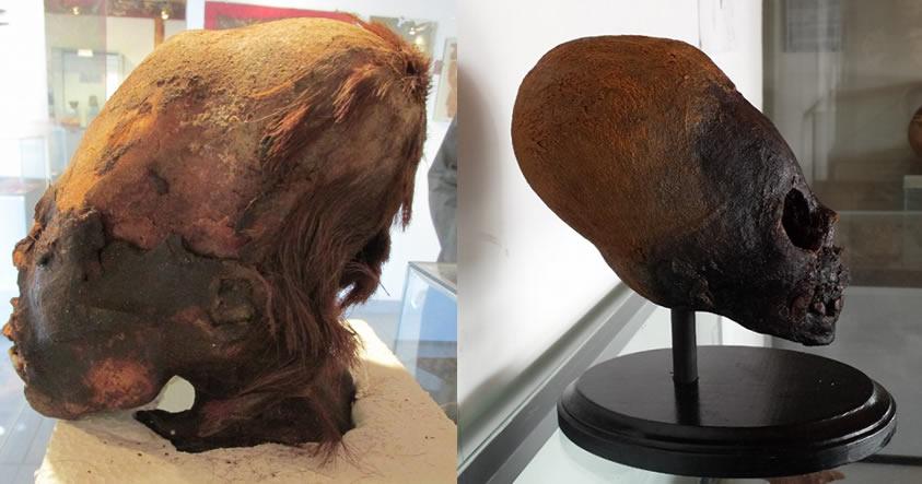 Resultados de ADN de los cráneos alargados de Paracas: ¿Nobleza europea?