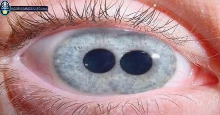 ¿Es posible distinguir a los híbridos humano-extraterrestre por sus ojos?
