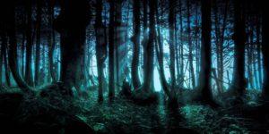 ¿Existen extraños seres en los bosques que secuestran a personas?