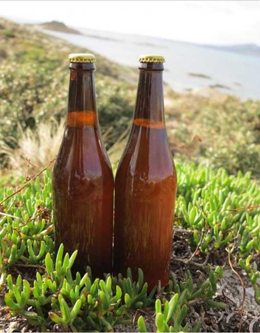 Botellas de la cerveza recreada recientemente según una antigua receta de finales del siglo XVIII.