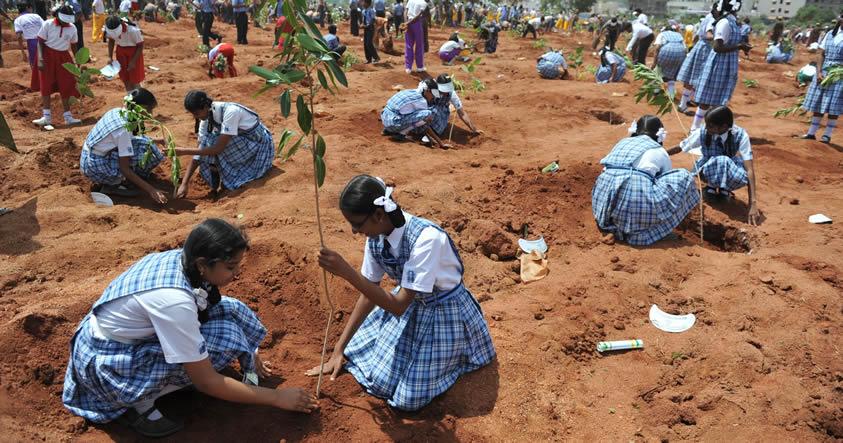 Escuela en la India ha pedido a los padres plantar un árbol en lugar de pagar cuotas