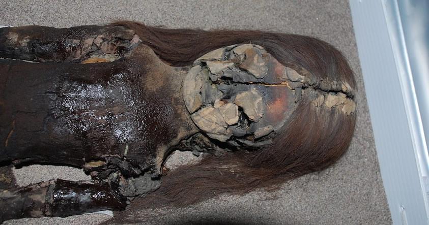Escáner revelará los secretos de las momias más antiguas del mundo