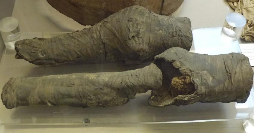 Investigadores creen haber hallado las piernas desmembradas de la reina Nefertari