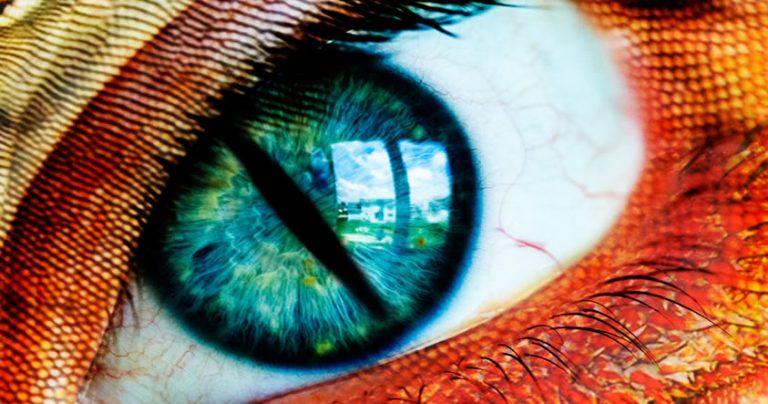 Ocho rasgos reptilianos en los seres humanos