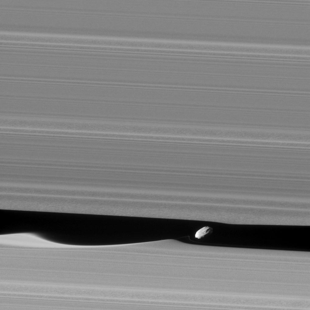 Daphnis, satélite de Saturno.