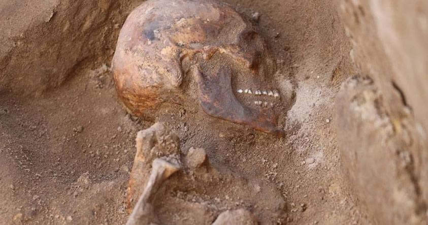 Decenas de tumbas y restos de un misterioso cocodrilo fueron encontradas en Egipto
