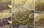 NASA ha ocultado ciudades y seres vivos en Venus: Rusia revela sospechosas imágenes