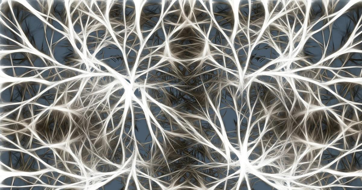 Científicos descubren que las neuronas se comunican de una manera insospechada