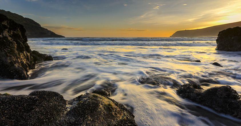 Los niveles de oxígeno en el océano están cayendo, y es debido a nosotros