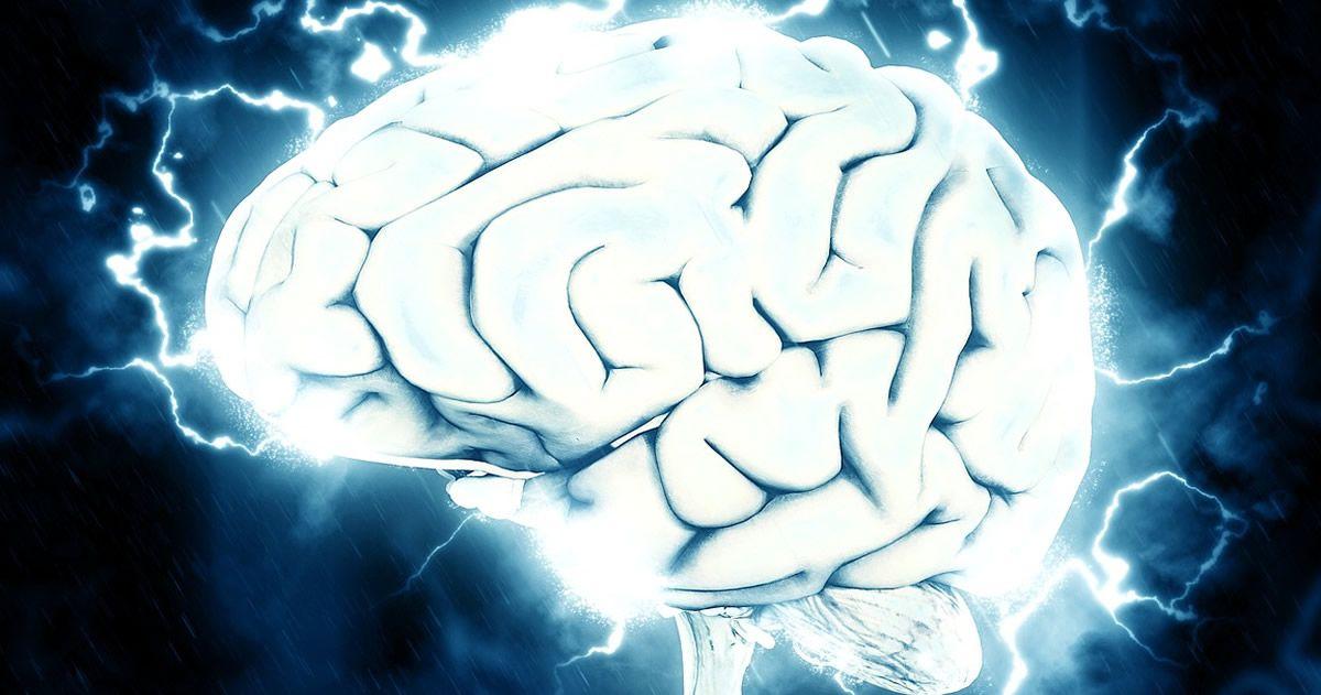 Investigadores registran señales de actividad cerebral después de la muerte