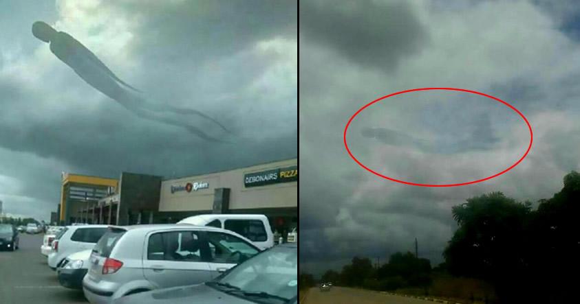 ¿Monstruo volador fotografiado Zambia? Posibles explicaciones