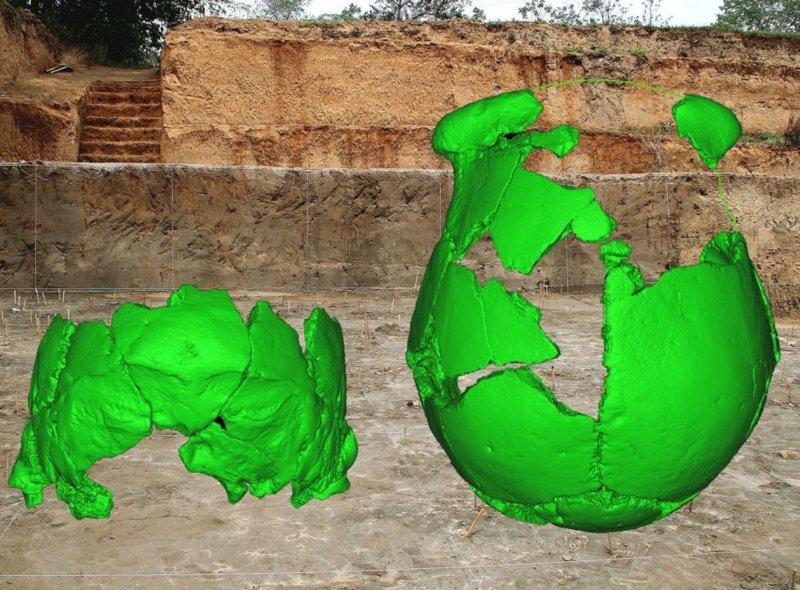 Reconstrucciones de los cráneos superpuestos sobre el sitio donde fueron encontrados.