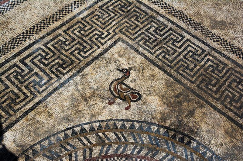 Imagen de un pato en el mosaico.
