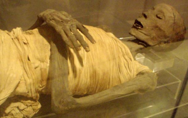 """Los restos momificados de """"Usermontu""""."""