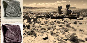 Una huella de zapato de 200 millones de años ¿Es hora de reescribir la Historia?