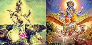 Vahanas: Vehículos animales sagrados de los dioses hindúes; y su diferencia con los Vimanas