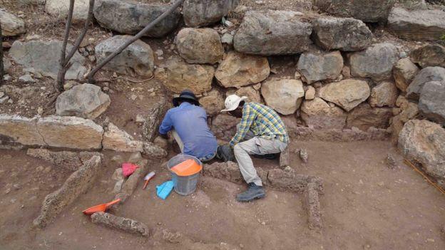 Se espera que el próximo año se realicen nuevas excavaciones.