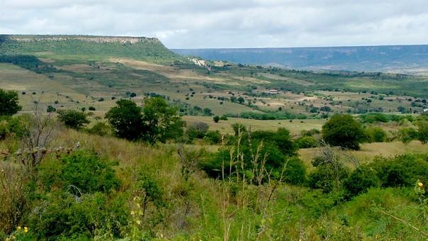 El hongo fue encontrada en esta zona del noreste de Brasil, que anteriormente fue parte del supercontinente Gondwana.