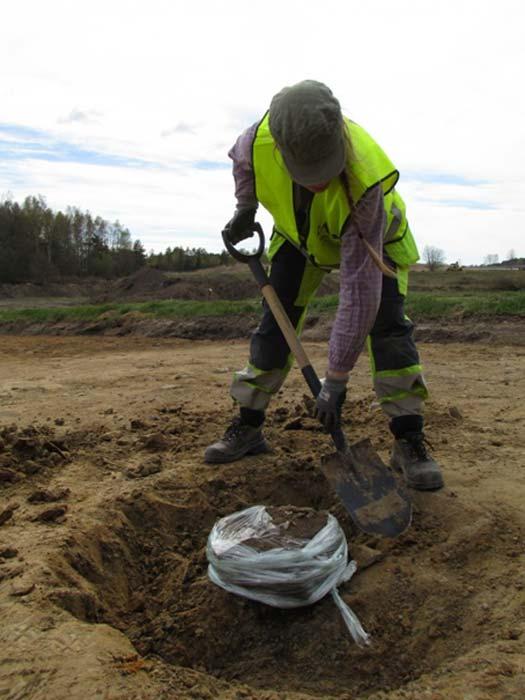 Lina Håkansdotter palea cuidadosamente en la tierra para desenterrar una antigua olla descubierta cerca de los 82 fosos de Sunnsvära, Suecia. El plástico impide que la olla se deshaga o rompa a lo largo del proceso.