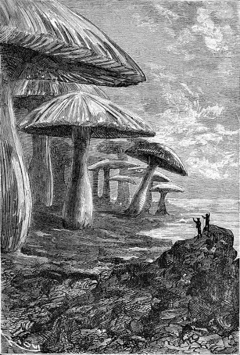 Ilustración dibujada por Édouard Riou en 1864, de la edición original de «Viaje al centro de La Tierra», obra del célebre Julio Verne.