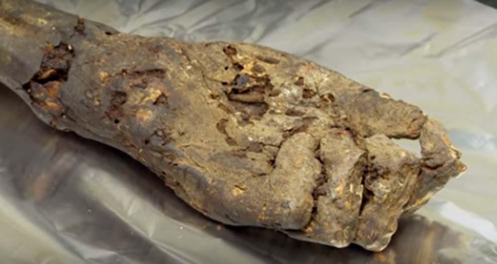 Mano momificada (circa 1000 a. C.) utilizada para obtener antiguo ADN egipcio