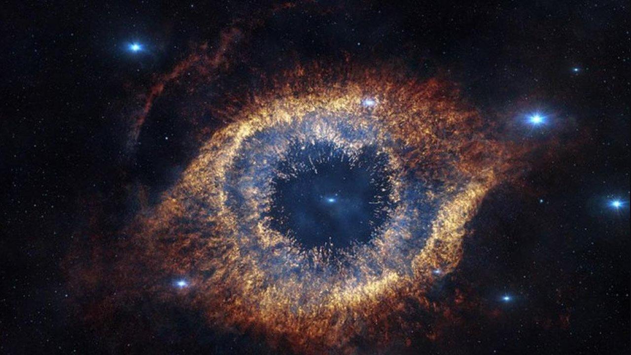 ¿Es el Universo una entidad consciente?