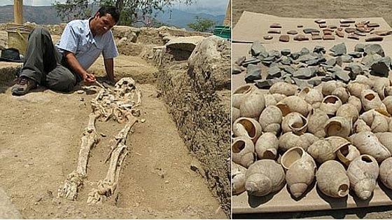 Esqueleto y caracolas hallados en el yacimiento de Montegrande.