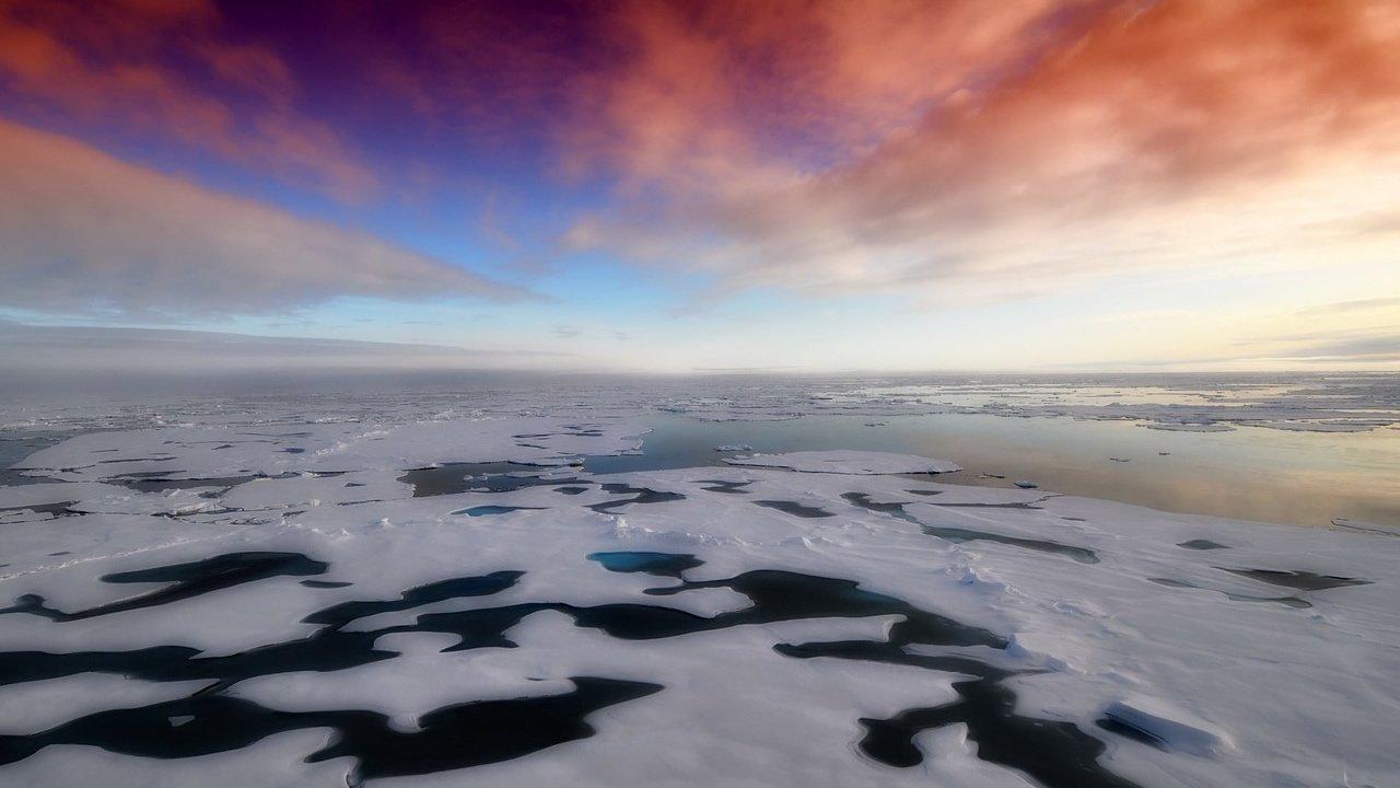 Detectan cafeína, ibuprofeno, paracetamol y cocaína en las aguas de la Antártida