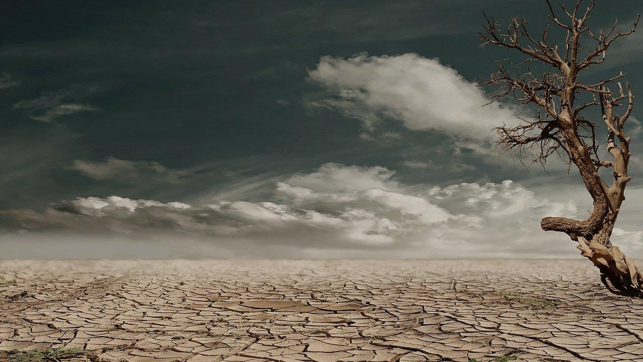 La Tierra agotará sus recursos naturales anuales en cuestión de días
