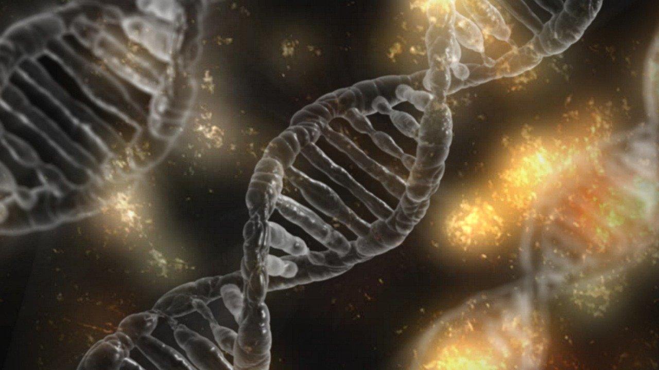 Científicos insertan un vídeo en el ADN de una bacteria viva ¿Qué esconde el ADN?