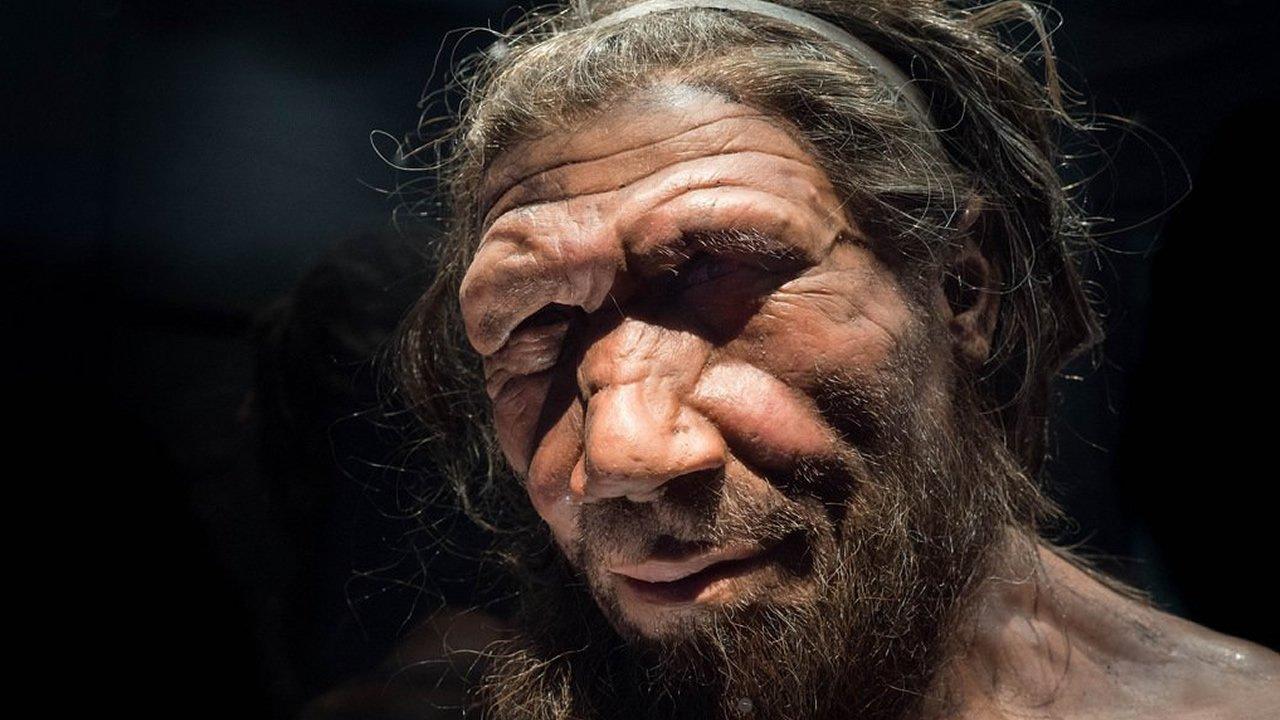 Nuevo ADN de un hueso de Neandertal contiene evidencia de una tribu perdida de humanos