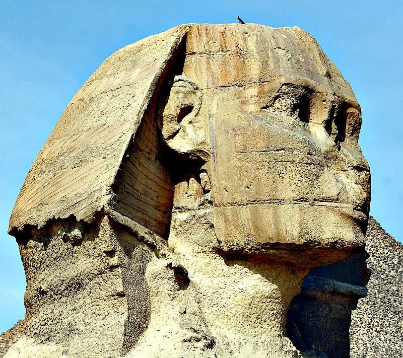 Detalle de la cabeza y el tocado de la esfinge, en el que pueden observarse los daños provocados por la erosión.