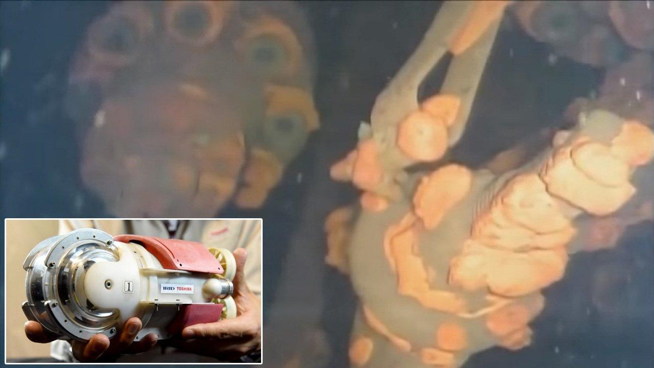 Robot submarino realiza un gran descubrimiento en la central nuclear de Fukushima (Vídeo)