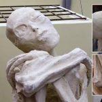 Momia «extraterrestre» de Nasca, Perú: El análisis de manos y pies