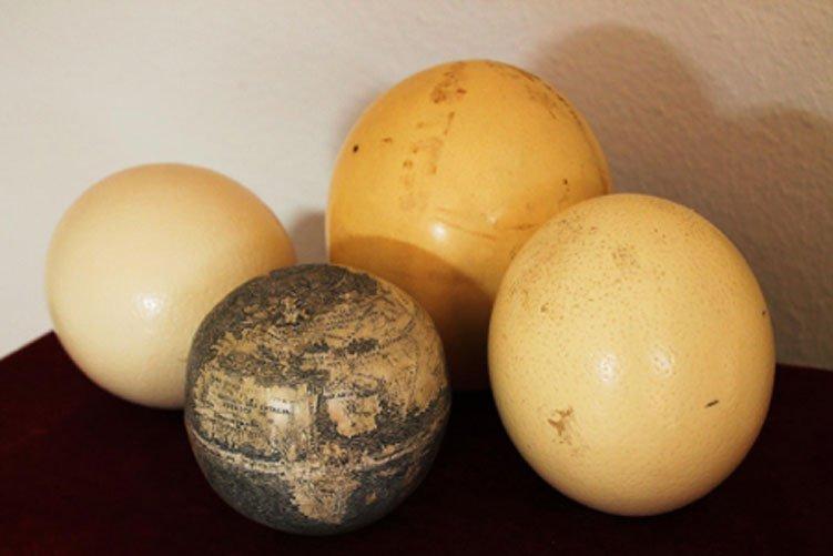 El antiguo globo terráqueo grabado sobre cáscara de huevo de avestruz, rodeado a su vez de varios huevos de avestruz.