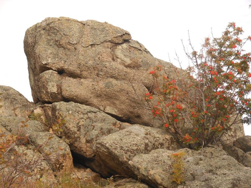 El «Dragón», el antiguo megalito descubierto cerca de las montañas de Altai de Rusia