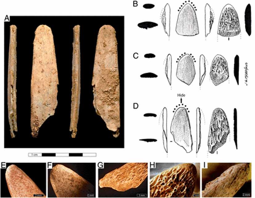 Fotografías y dibujos de herramientas de hueso procedentes de los yacimientos franceses de Abri Peyrony (AP) y Pech-de-l'Azé I (PA I).