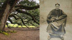 Li Ching-Yun: ¿Logró vivir este hombre durante 256 años?