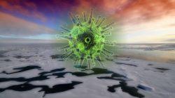 Hallan en la Antártida un singular virus que podría convertirse en una amenaza biológica