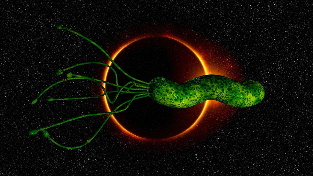 NASA enviará bacterias a la estratosfera durante el «Gran Eclipse Solar»