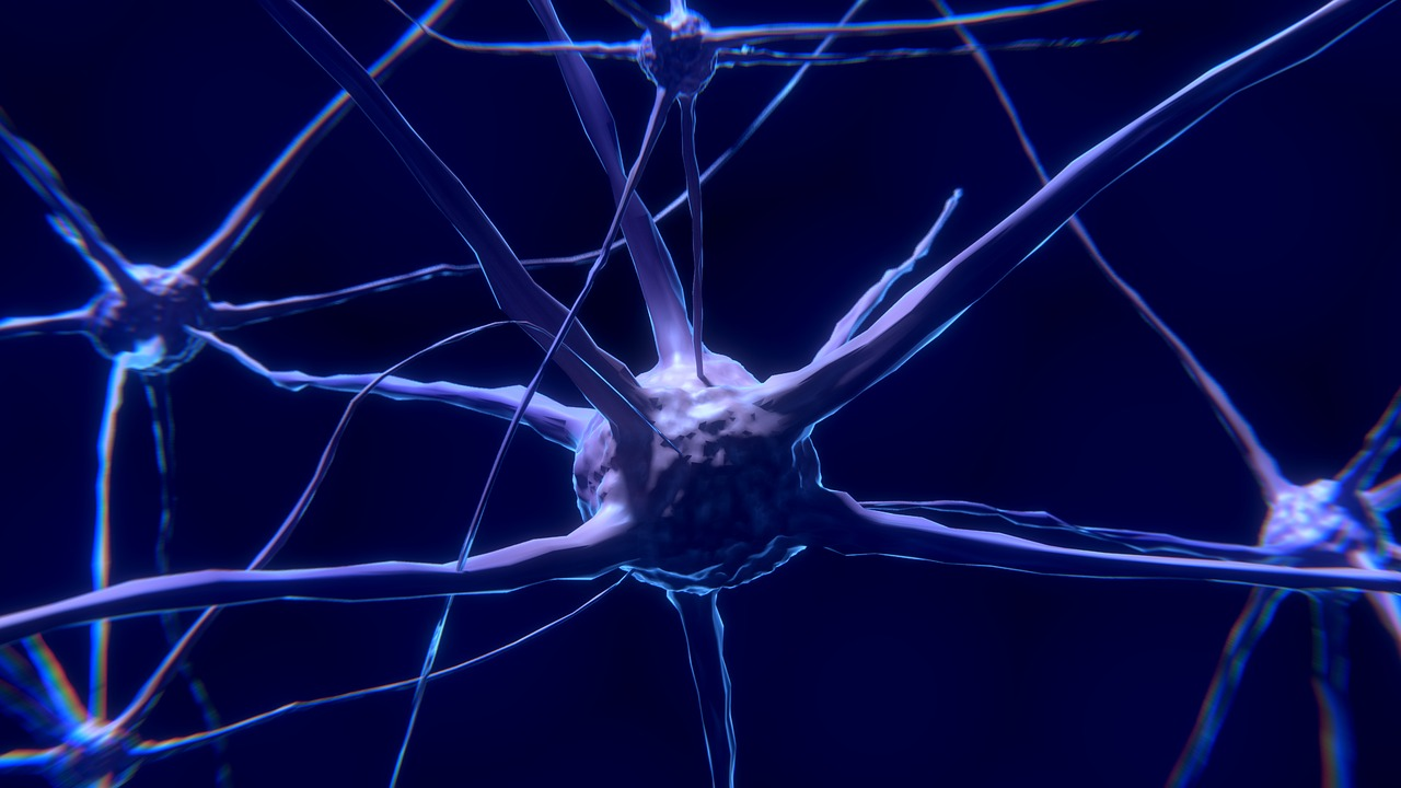 Las células del cerebro, pequeños universos
