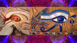 Sabiduría alienígena: La Glándula Pineal y el más grande secreto de todos los tiempos