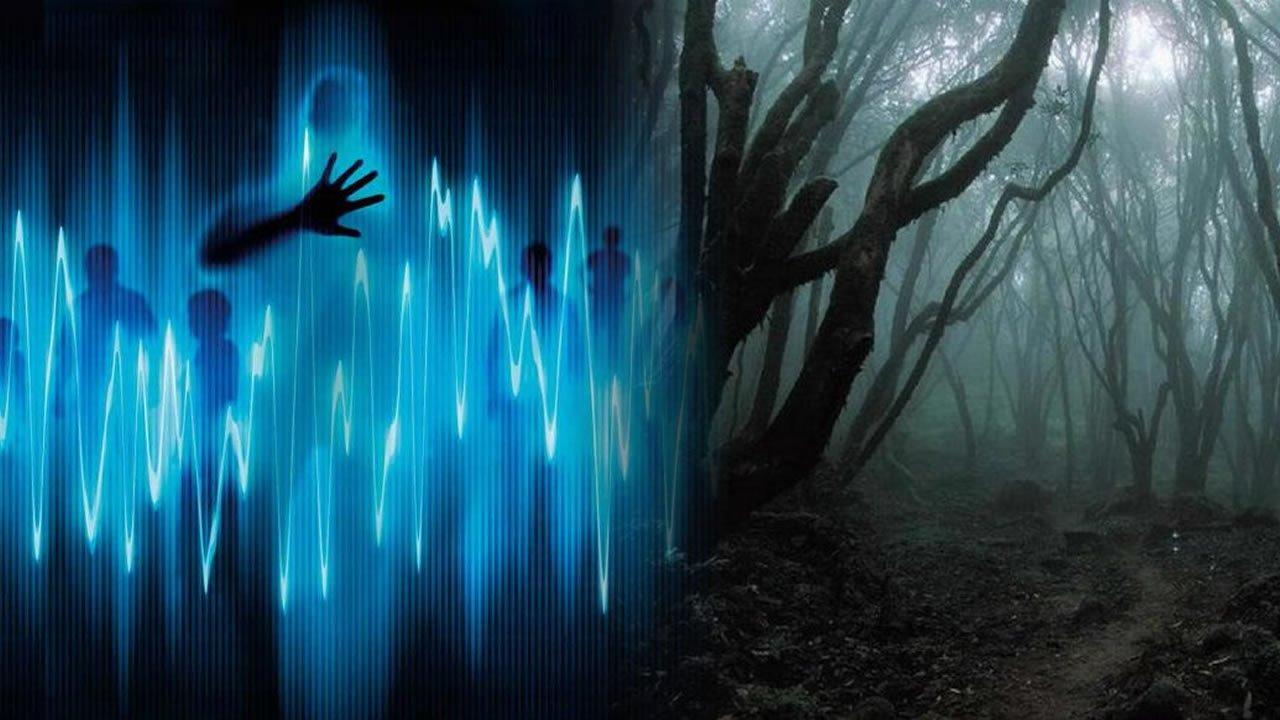 Psicofonías: ¿Voces desde el más allá intentando darnos un mensaje?