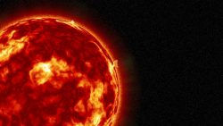 Científicos de Harvard calculan cuándo una erupción solar acabará con la humanidad