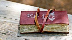 Rauðskinna: El famoso libro islandés de la magia negra