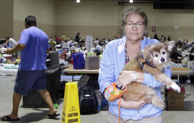 Lilliam Garay lleva a su mascota Michael a, un refugio de huracanes para mascotas, el sábado 9 de septiembre de 2017, en Miami, cuando el huracán Irma se acercaba a Florida. Tan solo de ver sus rostros se nos parte el corazón.