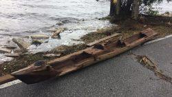Huracán Irma deja al descubierto una canoa de varios siglos de antigüedad en Florida