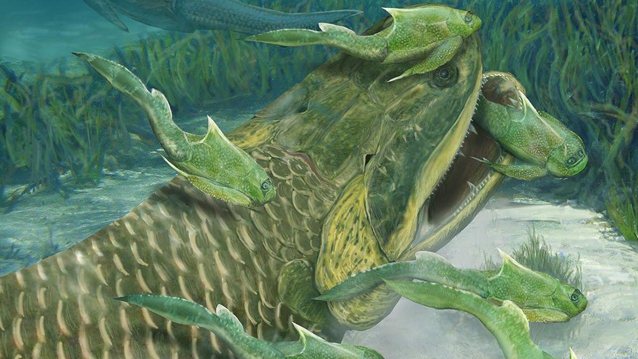 Un extraño fósil podría cambiar la historia de la evolución de los animales terrestres